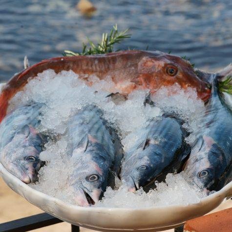 Il pescato locale