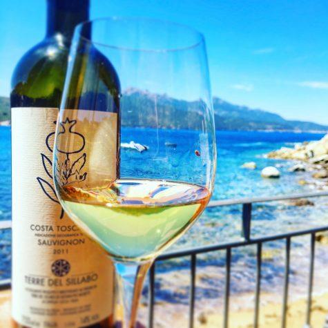 Vista dalla terrazza in compagnia di uno dei nostri vini