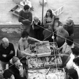 Il pescato locale in mostra sulla terrazza